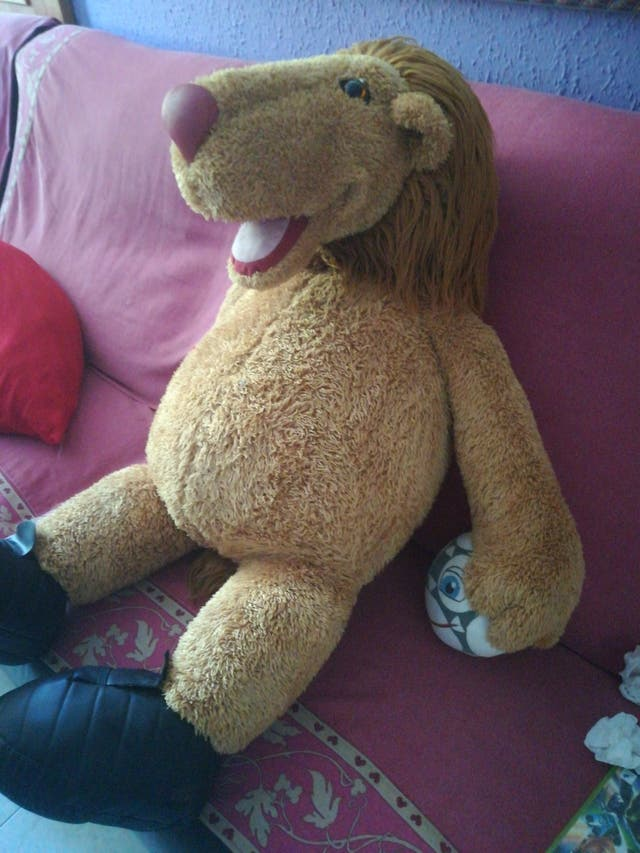 tigre gigante recién comprado