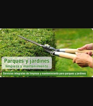Jardinero y mantenimiento