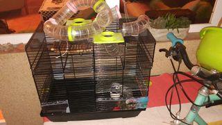 jaula roedores, hamster, jerbo, ratones, ratas..
