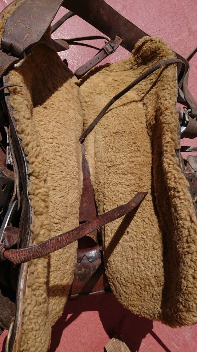 Montura/silla western cowboy americano caballo