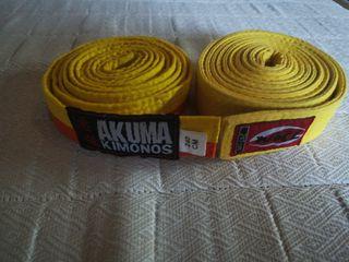 cinturón de karate