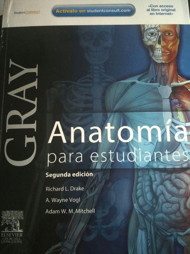 Perfecto Adam Anatomía Interactiva En Línea Regalo - Imágenes de ...