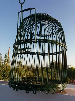 jaula para perdices