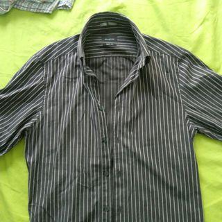 Springfield shirt slim fit