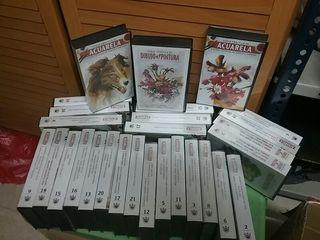 Cintas VHS curso de dibujo , pintura y acuarelas,