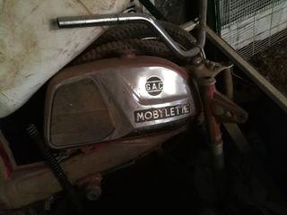 moto mobylette campera