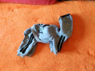 Chandal perro ropa