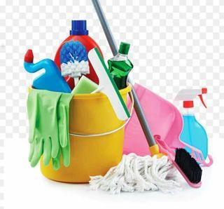 Limpieza de cualquier establecimiento