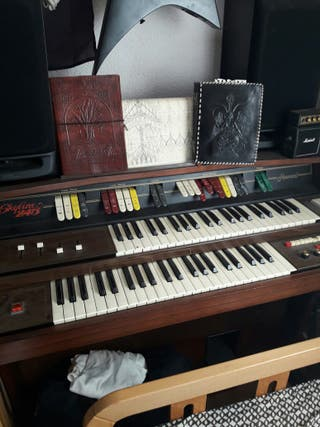 organo electrico skyline