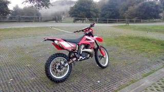 Gas gas 250