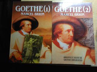 Biografía de Goethe