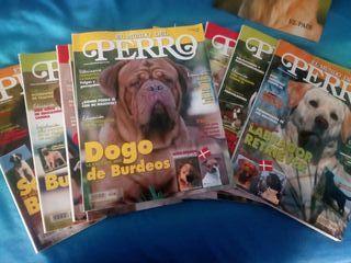 Colección revistas El Mundo del Perro