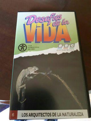 Coleccionismo VHS DESAFIOS DE LA VIDA documental