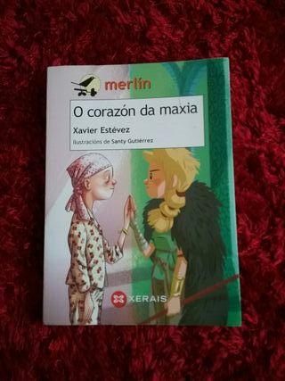 libro en gallego