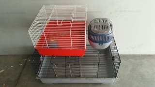 lote de dos jaulas para roedor grande y trasportin