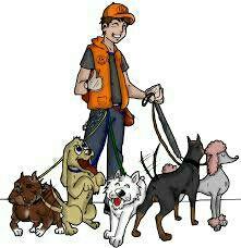 Paseo perros