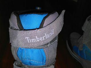 botas timberland niño