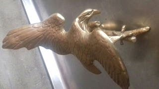 Águila de decoración
