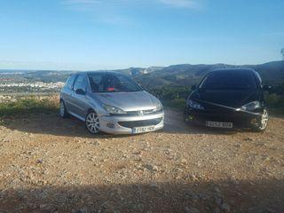 Peugeot 206 gti (gt)