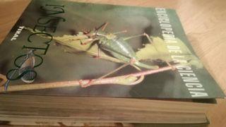 Enciclopedia Ciencia Insectos
