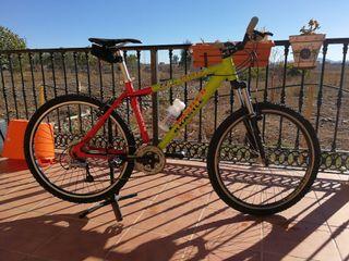 Bicicleta de montaña KASTLE