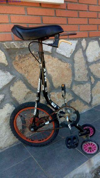 Bicicleta SKATEBIKE monciclo