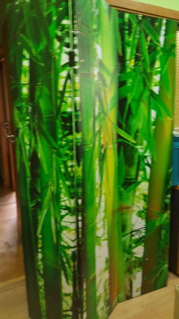 Biombo foto bambu