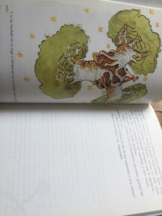 Libro Antoine de Saint-Exupery