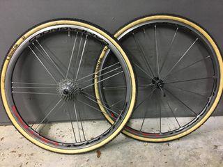 Ruedas ciclocross Campagnolo Shamal ultra