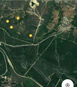 Parcelas Sitios para colmenas