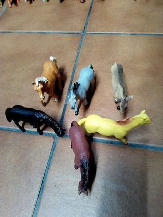 animales por lotes