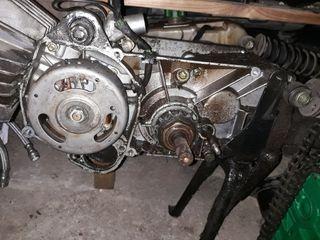 motor empuje derbi variant