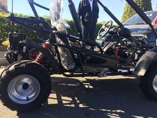 Mini buggies buggy 160cc