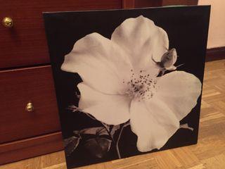Cuadro Flor