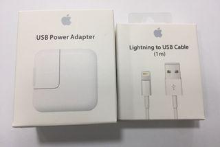 Cargador + cable ipad original