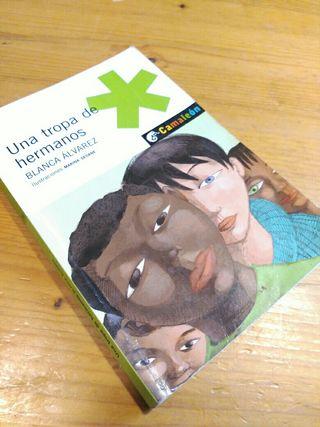 Libro infantil- juvenil