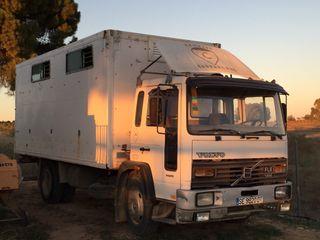 Camion de caballo