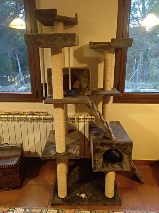Caseta Rascador gato