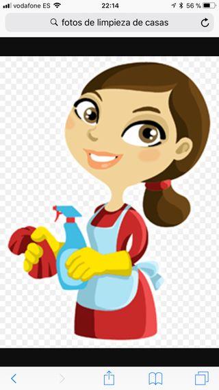 Limpiadora de patios y casas