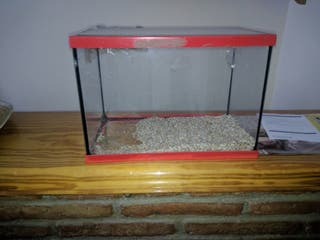 Terrario pequeño para animales pequeños
