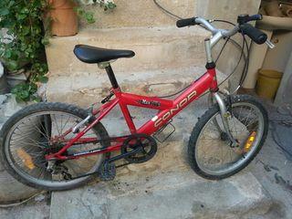Bicicleta en vinebre