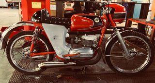 Bultaco junior 75cc gt2