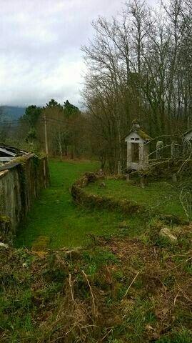 Terreno restaurar O Couto (Lougares)