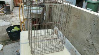 jaula para loros