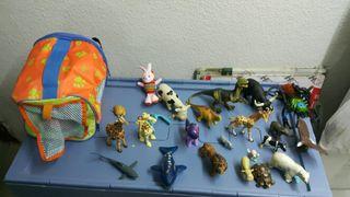animales y transportin
