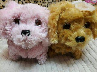 pareja de perritos