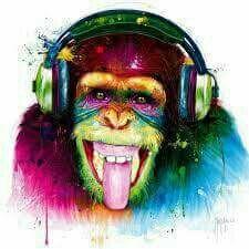 SE OFRECE DJ.