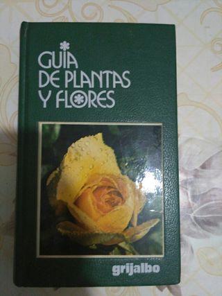 Guia del cuidado de plantas y flores