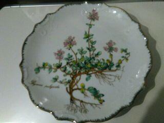 Plato decorativo porcelana francesa