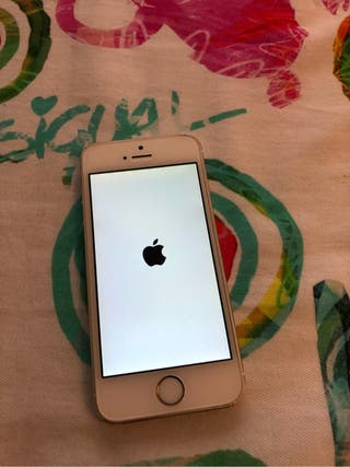 iPhone 5s IMPECABLE